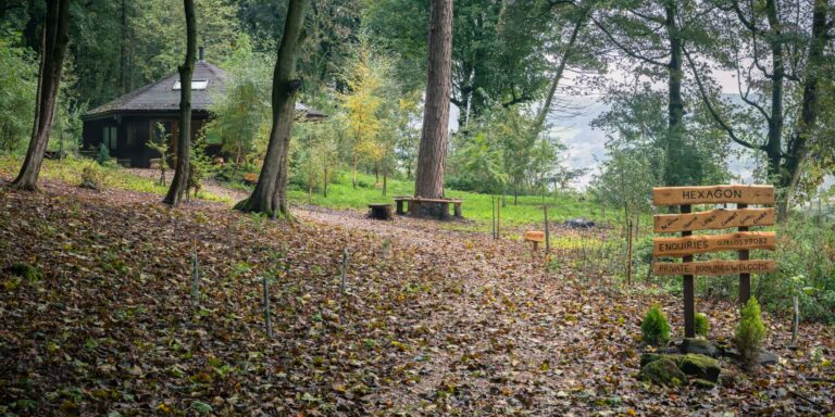 A leaf covered path leads up to Whitewoods Wellbeing's hexagonal Study Barn at Fishpond Wood, Bewerley